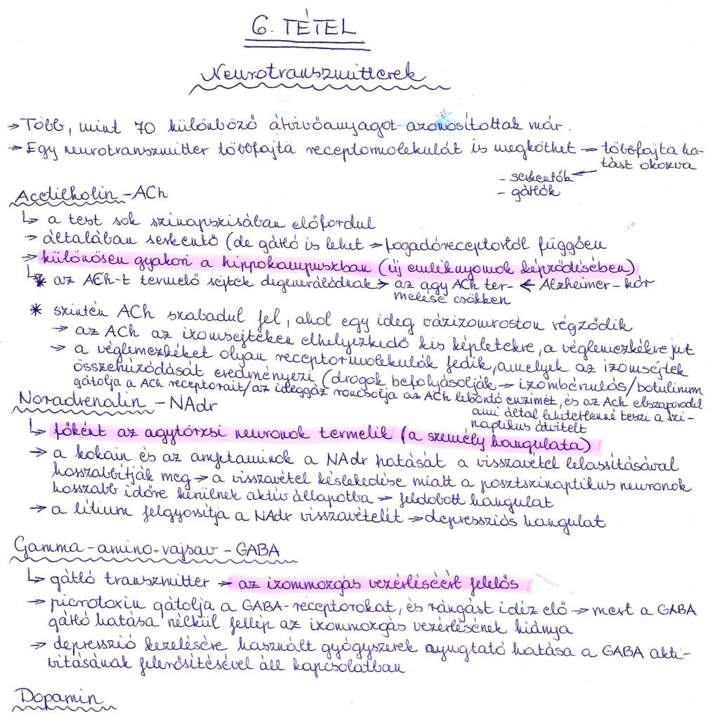 Fontosabb neurotranszmitterek