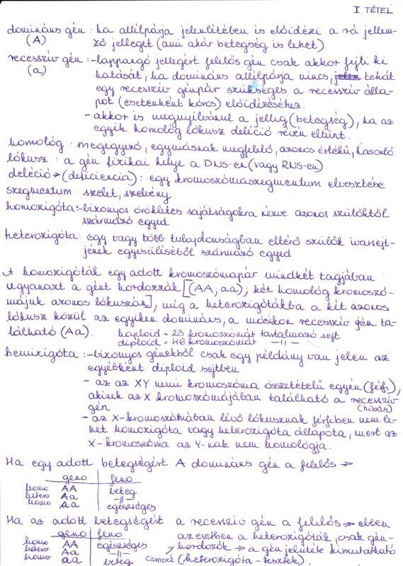 látás genotípus)